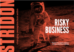 Stridon E-book Risky Business